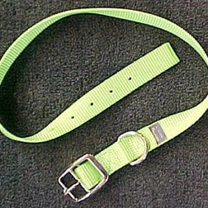 Goat Collar, Nylon Buck
