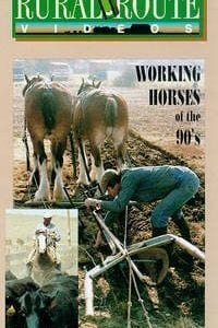 Working Horses of the '90s